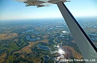 オカバンゴ・デルタの画像 p1_10