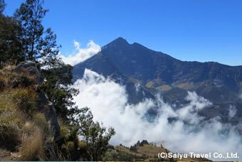 プラワガンセナルからリンジャニ山を望む