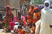 カメルーン・チャド・ニジェール 喧騒のアフリカ 熱帯からサヘルへの旅