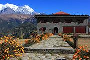 ネパール大紀行