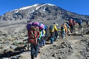 マチャメルートから登る アフリカ大陸最高峰キリマンジャロ